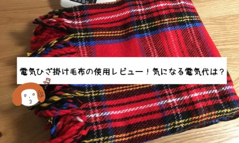 日本製 なかぎし電気ひざ掛け毛布の使用レビュー